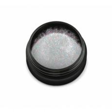 """97000Sclipici pentru unghii """"Didier Lab"""", holo silver 2,5g/Nail glitter """"Didier Lab"""", holo silver"""